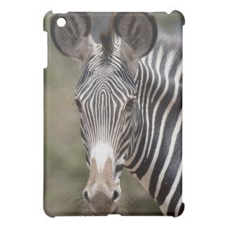 シマウマ、ケニヤ、アフリカ iPad MINIケース