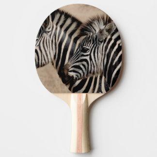 シマウマ 卓球ラケット