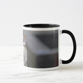 シマリスのマグ マグカップ