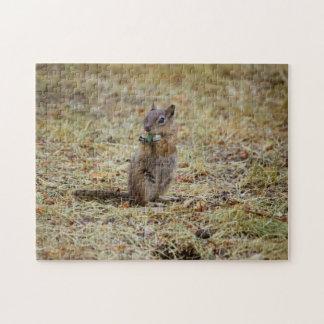 シマリス-グランドキャニオンの国立公園-アリゾナ ジグソーパズル