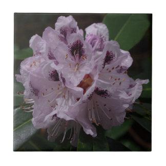 シャクナゲの花のセラミックタイル タイル