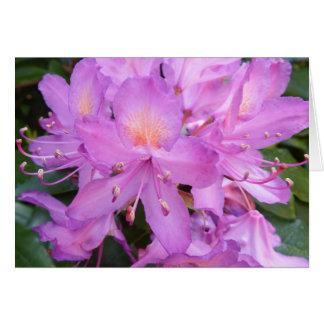 シャクナゲの花のバースデー・カード カード