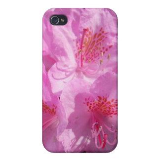 シャクナゲのiPadのSpeckのピンクの場合 iPhone 4 Case