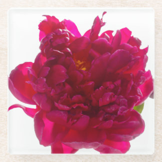 シャクヤクの花のコースター ガラスコースター