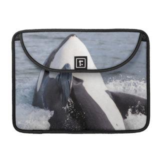 シャチのクジラの破ること MacBook PROスリーブ