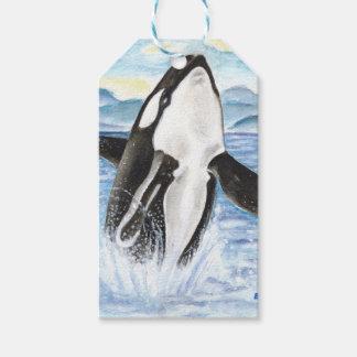 シャチのクジラを破る水彩画 ギフトタグ