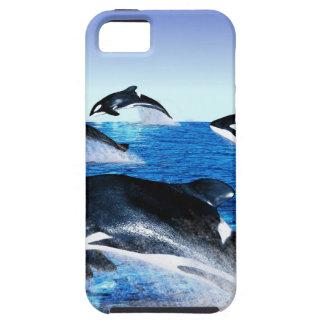 シャチのポッド iPhone SE/5/5s ケース