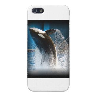 シャチの跳躍 iPhone SE/5/5sケース
