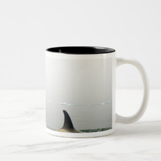 シャチ(シャチ)、Orcinusのシャチ、ポッド2 ツートーンマグカップ