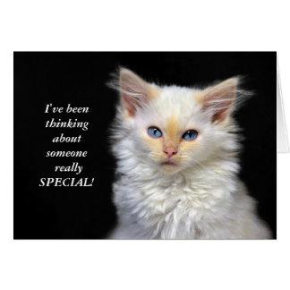 シャムの子ネコの誕生日のユーモア カード