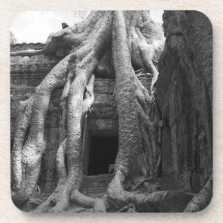 シャムは、カンボジア収獲します。 ちょうどシャムの外で収獲して下さい、 コースター