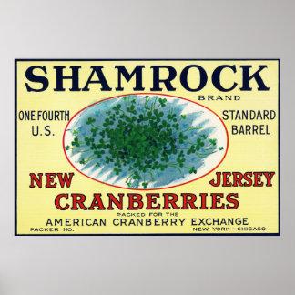 シャムロックのブランドのクランベリーのラベル ポスター