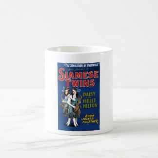 シャム双生児-デイジーおよびすみれ色のHilton コーヒーマグカップ