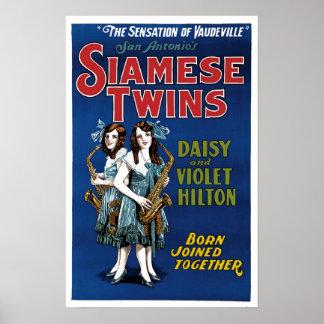 シャム双生児-デイジーおよびすみれ色のHilton ポスター
