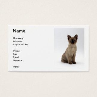 シャム猫の名刺 名刺