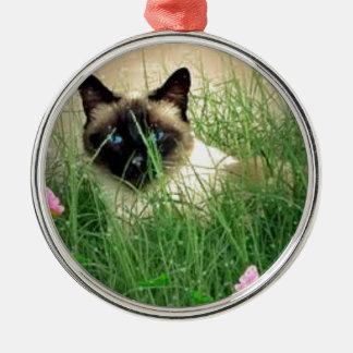 シャム猫をかいま見ること、子猫の隠れること メタルオーナメント