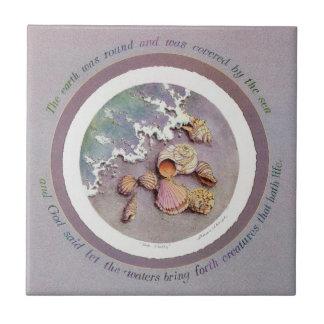 シャロンSHARPE著海の貝 タイル