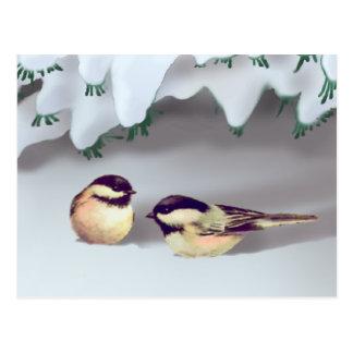 シャロンSHARPE著雪の鳥 ポストカード