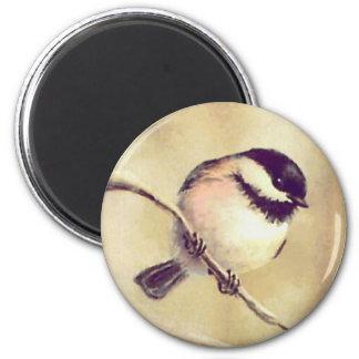 シャロンSHARPE著1 《鳥》アメリカゴガラ マグネット
