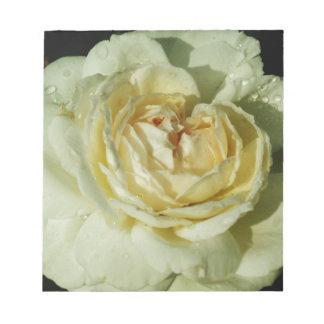 シャンペンの白いバラの花柄の雨滴 ノートパッド