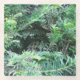 シャーウッド森のイチイ材のコースター ガラスコースター