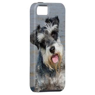 シュナウツァーのミニチュア犬のかわいい写真のポートレート、ギフト iPhone SE/5/5s ケース