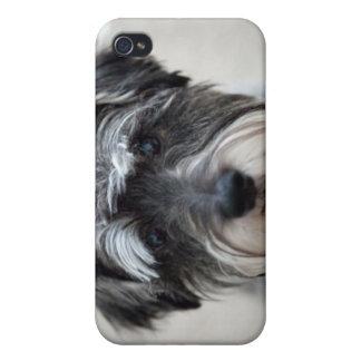 シュナウツァー犬のiPhoneの場合 iPhone 4/4S ケース