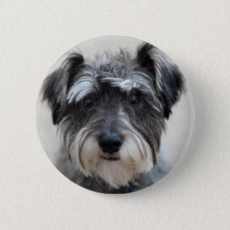 シュナウツァー犬円形Pin 缶バッジ