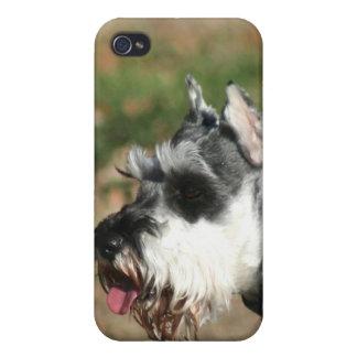 シュナウツァー犬 iPhone 4/4S CASE
