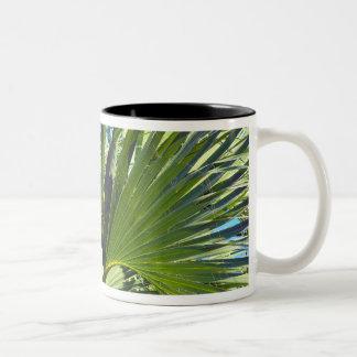 シュロの葉、潮風 ツートーンマグカップ