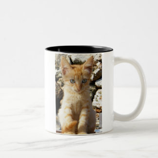 ショウガの子ネコ ツートーンマグカップ