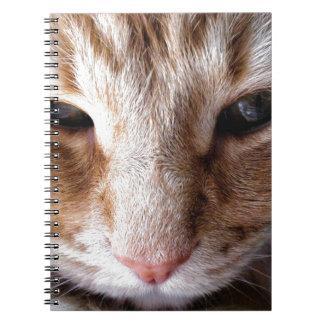 ショウガの子ネコ ノートブック