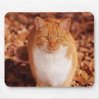ショウガの虎猫猫のマウスパッド マウスパッド