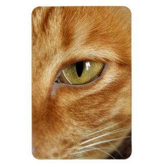 ショウガ猫 マグネット