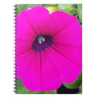 ショッキングピンクの開花の写真のノート(80ページB&W) ノートブック