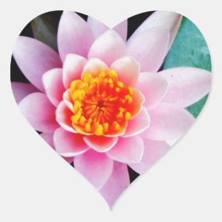 ショッキングピンク及びオレンジはすスイレンの花 ハートシール