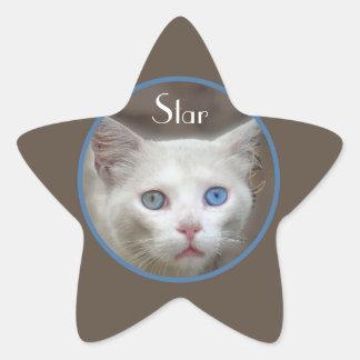 ショーの星 星シール