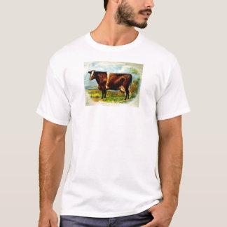 ショートホーンの乳牛の石版印刷1904年 Tシャツ