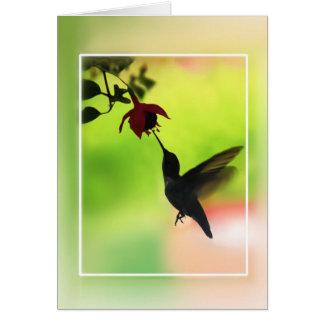 シルエットのハチドリ カード
