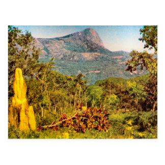 シロアリの小山、山脈da Hanba、アンゴラ ポストカード