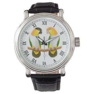 シロハラインコのオウム愛腕時計 腕時計