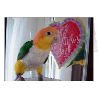 シロハラインコのバレンタイン カード