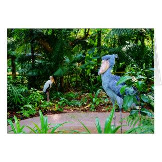 シンガポールの動物園の挨拶状の鳥 カード
