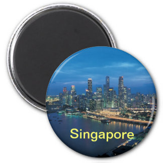 シンガポールの磁石 マグネット
