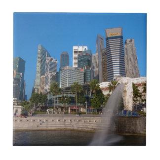 シンガポールMerlion公園 タイル