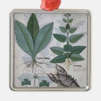 「シンプルな薬の本からのイラストレーション シルバーカラー正方形オーナメント