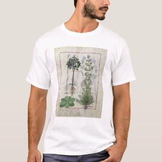 「シンプルな薬」2の本からのイラストレーション Tシャツ