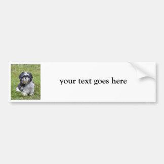 シーズー(犬)のTzuのカスタムでかわいい写真のバンパーステッカー バンパーステッカー