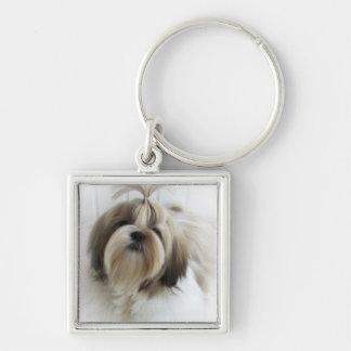 シーズー(犬)のTzuのキーホルダー キーホルダー