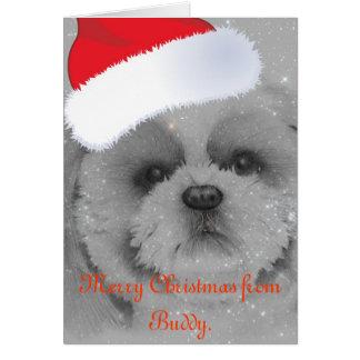 シーズー(犬)のTzuのクリスマスカード カード